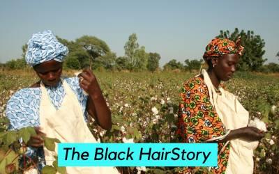 Black Hairstory